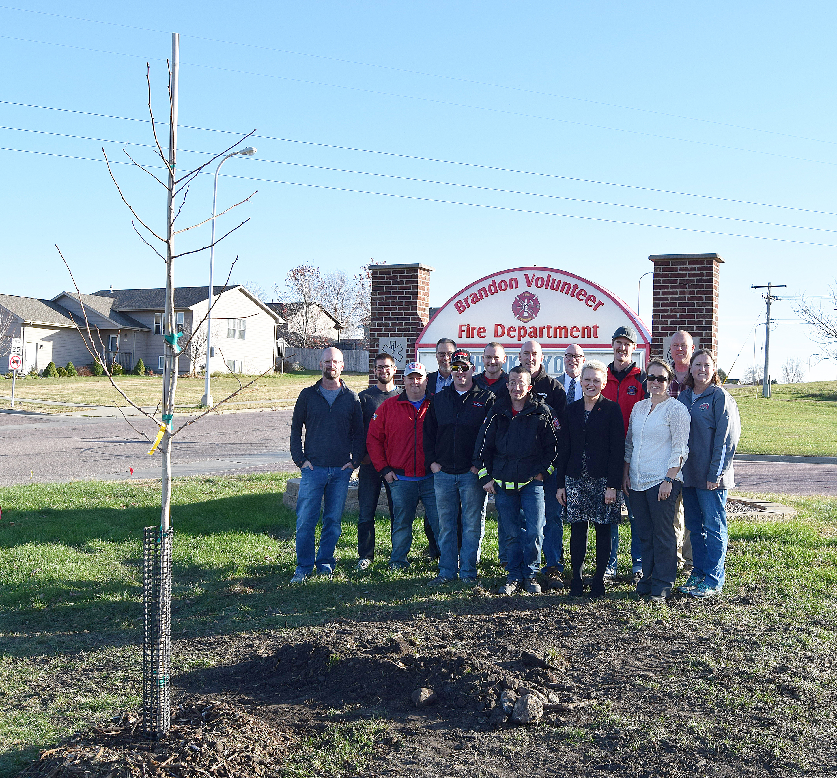 Brandon city officials, volunteer firefighters and city park board members planted three Ginko trees to replace three Ash trees along the boulevard of the fire station last week. The tree planting is Brandon's salute Arbor Day, which is typically recognized in April. Devin Coughlin, director of parks, said the trees will grow 50 to 60 feet fall and are disease and bug resistant. Brandon was designated a Tree City U.S.A. in 2008. <strong>Jill Meier/BV Journal</strong>*/